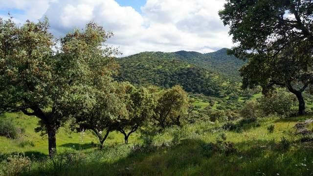 ayudas forestales Andalucía