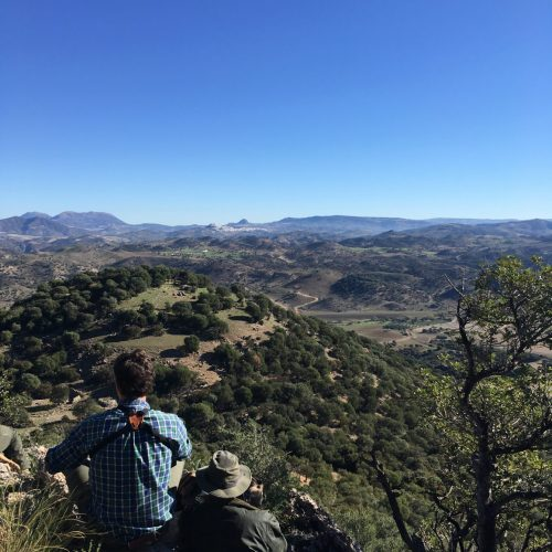 Andalusia hunting license: How to get the license to hunt in Southern Spain