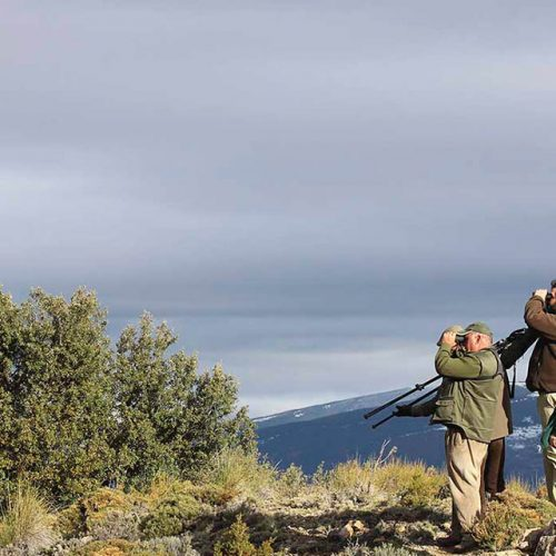 Hunting license of Spain. How can you get it? We help you